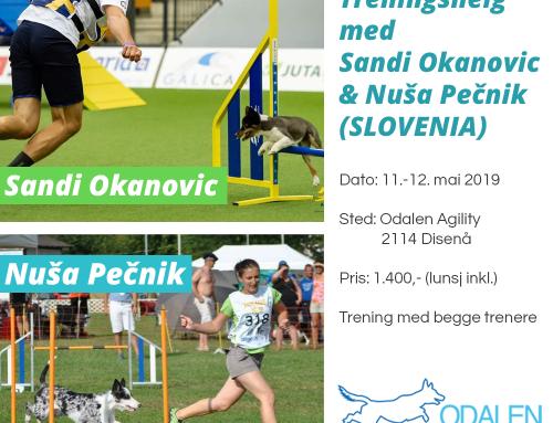 Agility Treningshelg med Sandi Okanovic & Nuša Pečnik